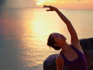 22 Days 200hr Vinyasa Yoga Teacher Training in Mexico