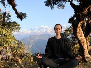 6 Days Magical Yoga Retreat in India