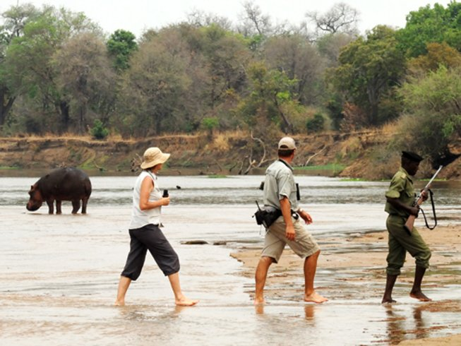 8 Days North and South Luangwa National Park Safari