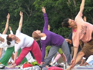 39 Days 300-Hour Advanced Yoga Teacher Training in Rishikesh, India