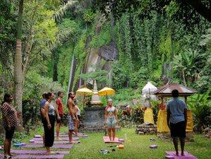 7 Day Emotional Cleansing, Wellness Detox, Meditation, and Yoga Retreat in Lovina, Bali
