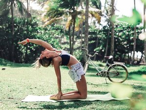 8 Days Yoga, Surf and Mindfulness Retreat in Itacaré, Brazil