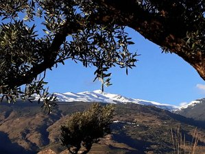 4 Tage Privates Yoga Retreat im Nationalpark Sierra Nevada, Órgiva, Andalusien