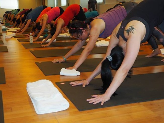 10 Days Beginner Yoga Retreat in Rishikesh, India