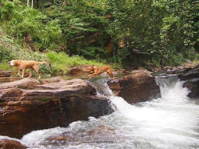 5 Days Ayurveda Yoga Retreat in Sri Lanka