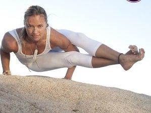 29 Days 300-Hour Yoga Teacher Training in Québec, Canada