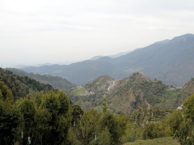 6 días de retiro de yoga, reiki y senderismo en los Himalayas, India