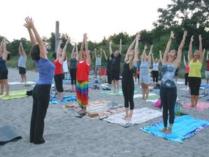 16 Days 100-Hours Vinyasa Flow Yoga Teacher Training in Rishikesh, India