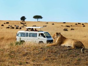 8 Days Highlights of Diani Beach Stay and Tsavo East Safari Adventure in Kenya