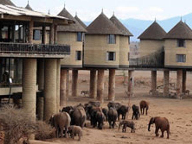 2 Days Ngutuni Salt Lick Game Safari in Kenya