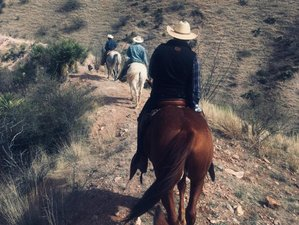 3 Days Wonderful Horse Riding and Ranch Vacation in Sonora, Mexico