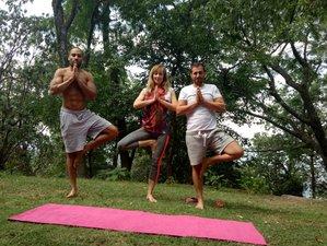 8 Day Detox, Meditation and Yoga Holiday in Dharmshala, Himachal Pradesh