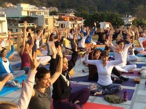 14 Day Meditation and Yoga Retreat in Rishikesh