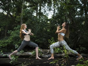 24 Days 200-Hour Yoga Teacher Training in Bali, Indonesia