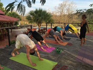 7 Days Revitalizing Yoga Retreat in Costa Rica
