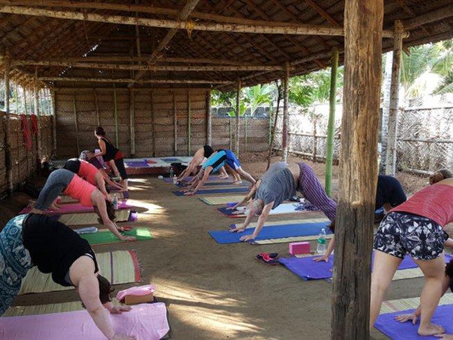 13 jours en stage de yoga, méditation et ayurveda dans le Kérala, Inde