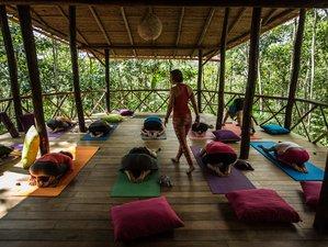 10 jours en stage de yoga et médecine sacrée en Amazonie, Pérou