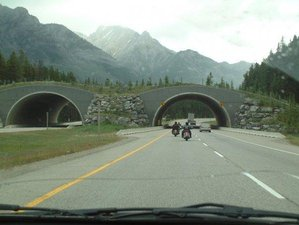 12 Day Self-Guided Canadian Rockies Motorcycle Tour in Western Canada