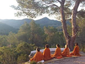 7 Days Healthy Food and Yoga Retreat in Spain