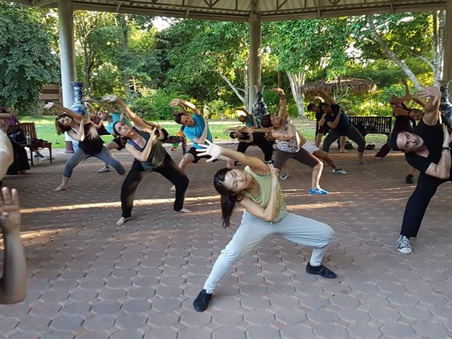 6 Days Level 1 Dynamic 5 Animal Flow Medical Qigong Course in Chiang Mai, Thailand