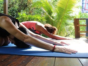 10 Days Roots and Reggae Yoga Retreat in Negril, Jamaica