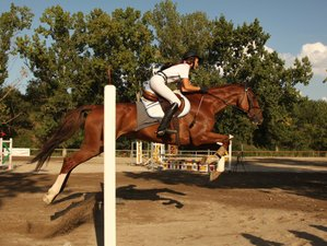 7 Day Jumping and Flatwork Training Horse Riding Holiday in Umbria, Province of Terni