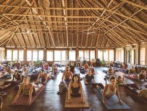 24 días de retiro de yoga y meditación en la costa del Pacífico mexicano, Mazunte