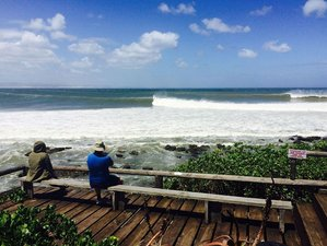 7 Days Surf Camp at Dreamland, South Africa