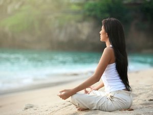 4 Day Meditation and Rejuvenating Yoga Retreat in Boca Raton, Florida