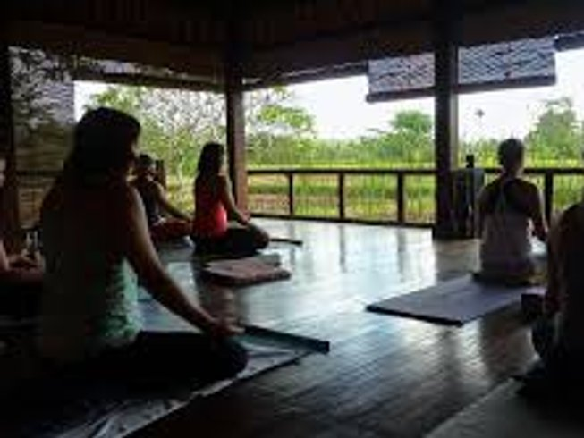 7 Days Power Living Yoga Retreat  in Bali