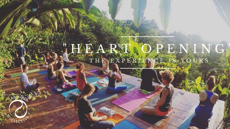 15 days 200-hour yoga teacher training dominical, costa rica ...