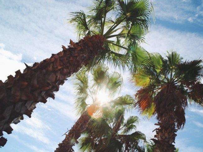 "7 Days ""Dive Deeper"" Advanced Yoga Retreat Andalucia, Spain"