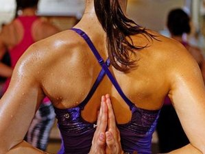 29 Days Hot Yoga Teacher Training in Barcelona