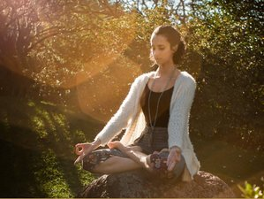 3 Day Emotional Healing and Meditation Retreat in Tepoztlán, Morelos