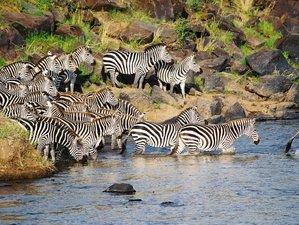 3 Days Maasai Mara Safari Budget Safari