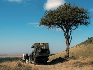 Traslado: Safaris en jeep