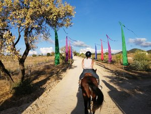5 Day Short Break with Yoga and Relaxing Horse Rides out in Nature for All Levels in Cadiz Province