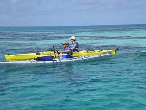 5 Day Glover's Reef Guided Kayaking and SUP Camp in Southwest Cay