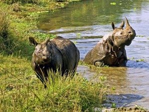 5 Days Chitwan National Park Safari in Nepal