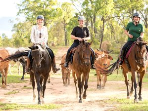4 Days Ironbark House Horse Riding Holiday in Dimbulah, QLD, Australia