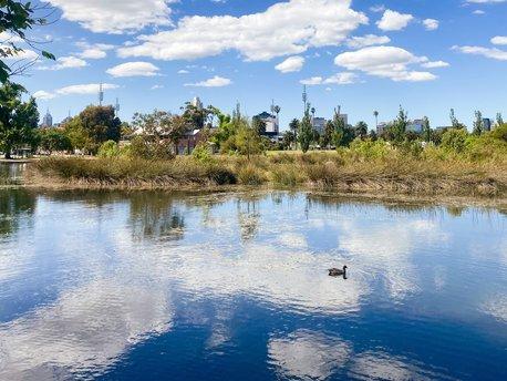 Ringtail Creek, Queensland