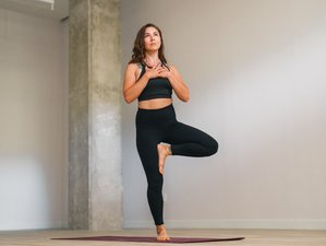 8 Weeks 200-Hour Online Yoga Teacher Training by My Vinyasa Practice