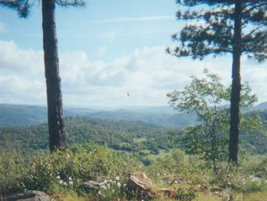 6 Day Medicine Flower Retreat to Detox in the Scenic Sierra Foothills of Northern California