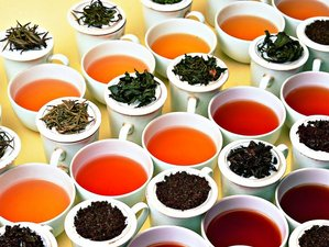5 Days Wild Masheer Tea Tasting in Assam, India