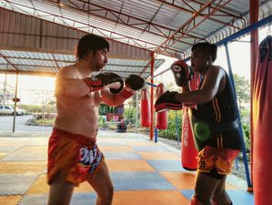30 Days Develop Muay Thai Skills, Get Stronger and Explore Countryside in Wichian Buri, Phetchabun