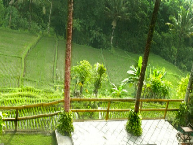 14 Days Yoga and Indonesian Detox Retreat in Bali