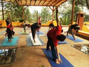 20 Days 200 Hours Yoga Teacher Training in Germany