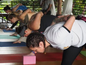 28 Day 300-Hour Hatha & Ashtanga Vinyasa Yoga Teacher Training in Chiang Mai