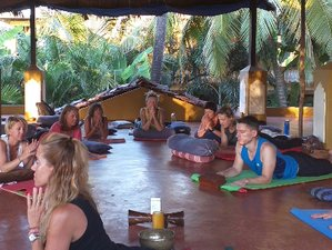 8 Day Transformational and Adventure Yin Yang Yoga Retreat in Goa