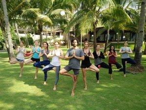28 Days 300-hour Advanced Multi-Style Yoga Teacher Training